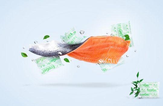 Gelpack-en-salmon-Foto-DLC-en-baja-540x350
